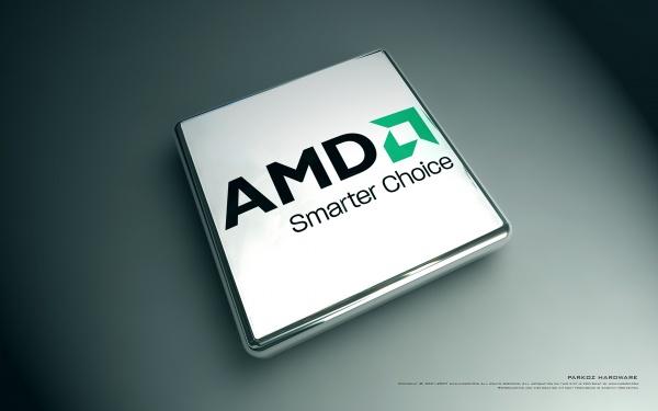 amd 20130823