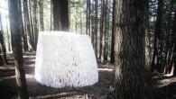 在美國加州北部的紅木森林中,有個藝術家駐留計畫提供給各個藝術家在森林中展現自己的 […]