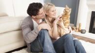 喵星人圓滾滾的可愛樣貌讓人融化,但若家裡養了超過2隻以上的貓咪,看到空空的飼料盤 […]