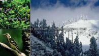 這周(9/6)國家公園將雪山東峰、合歡主峰還有石門山(位於合歡山)從步道A級中取 […]