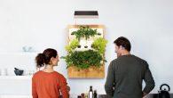 想要在家裡種菜,如果空間不夠大該怎麼辦?Kickstarter 眾籌募資平台有一 […]