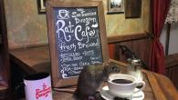 寵物主題咖啡廳有很多款,大家常聽到的貓咪喵星人、狗狗毛小孩、小鳥貓頭鷹,但在舊金 […]