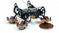 近來機器人相關的研發產品愈來愈多,只是…多數被報導的機器人都和我們的 […]