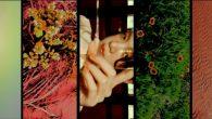 曾獲得金曲獎最佳音樂錄影帶獎的知名導演陳映之,是各大藝人指名操刀 MV 的第一人 […]