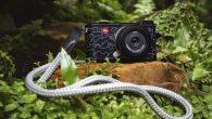 徠卡相機公司發佈徠卡CL「都市叢林」特別版相機,這是與義大利裔法籍攝影師、企業家 […]