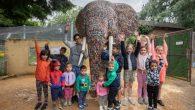 在英國西倫敦伊靈區的 Hanwell Zoo 動物園裡,最近有一隻高達 3 公尺 […]