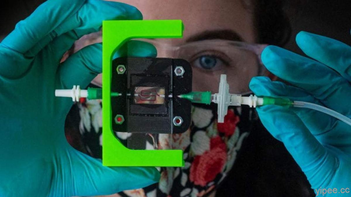 美國萊斯大學的工程師以 3D 列印與生物材料,為糖尿病患者研發可調節胰島素的植入物