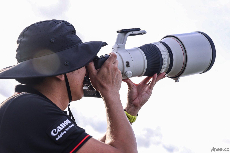 Canon 旗艦級超望遠 RF 鏡頭上市,回應 EOS R 相機超望遠的需求